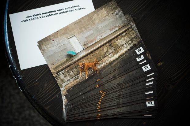 kortitpiilossa.jpg
